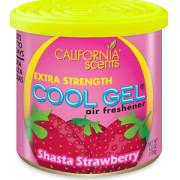 CG4-1212 MC Shasta Strawberry